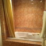 the shower jet tub