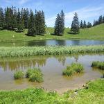 lac de Conches