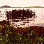 lake behind B&B