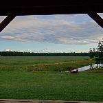 McKinley View B&B Foto