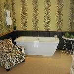 The insitu bath