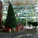Lobby during christmas