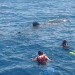 nadando junto a el