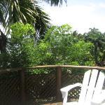 Notre balcon