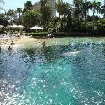 Das Schwimmbecken_1