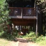 The Tree House!! WOW!!!