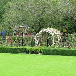 Rose Garden (view during Tea Time)