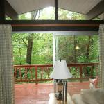 Opening to deck with view of the forest