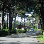 Beachside SP - Waldport
