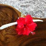 Fleur du jour sur la table du déjeuner