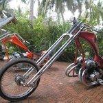 Bike Jamboree