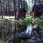 The Cabins behind ours