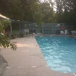 Swimming pool in marina