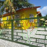 Tulpen en kokosnoten bungalow 26