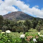 Turrialba vulkaan boven de Guyabo lodge