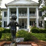 front view of the plantation