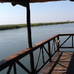 view over the Okavango at Drotsky's