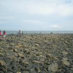 Searching for Rockpools at the Wren's Eggs - rich in sea life (blood suckers, crabs etc.)