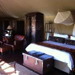Camp Shonga room