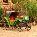 antique carriage in the yard