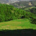 Photo of Osteria Da Firmo
