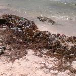 Trashy beach