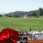 piękna okolica, widoki niesamowite z tarasu!
