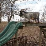 Bully the sliding billy goat