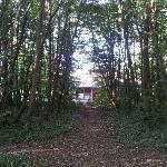 Vue de l'hôtel depuis la forêt