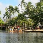 Tour en canoa