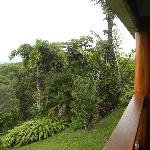 Vista desde del balcón