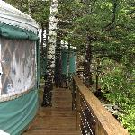 Side of yurt