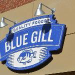 Blue Gill Photo