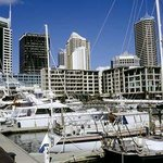 Viaduct Harbour Photo