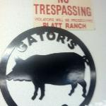 Stop by and have some of the Best Beef Brisket in town