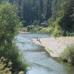 Burke's Canoe Trips on the Russian River Photo
