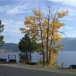 North Idaho Centennial Trail Bild