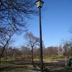 Deering Oaks Park Foto