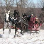 Изображение Allegra Farm And The Horsedrawn Carriage And Sleigh Museum Of New England