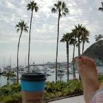 coffee in the morning, looking out to the harbor