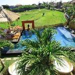 view from a balcony over pool and rice field