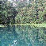 pristine Matevulu River