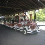 trenino per la visita al Safari