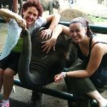 Taro Elephant Park