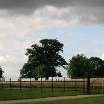 surrounding fields.
