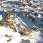 puffy snow