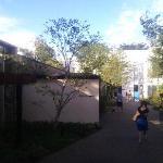 IVY PLACE의 사진