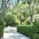Le Jardin de Tim