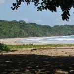 Playa de congo bongo