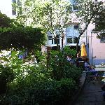green courtyard